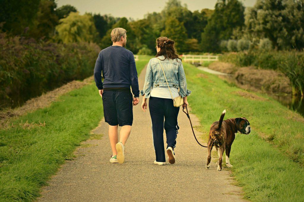 אימון כושר עם הכלב הרבה יותר יעיל משחשבתם
