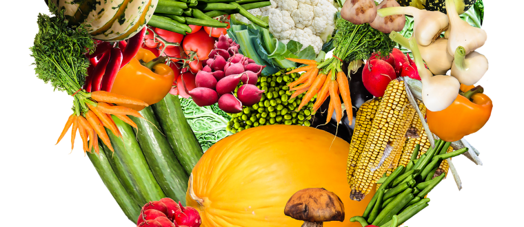 מהי חשיבות התזונה הנכונה בחיינו?